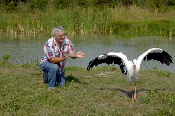 Bild 1 von 4: Stjepan und sein Storchenweibchen Malena