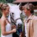 Utta Danella - Hochzeit auf dem Lande