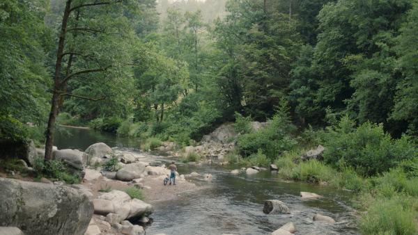 Bild 1 von 7: Jona (Finn-Henry Reyels) durchquert den Grenzwald zwischen Deutschland und Tschechien.