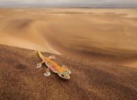 Hoanib - Heimat der Wüstenelefanten