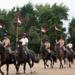Bilder zur Sendung: Die Pferde der Queen