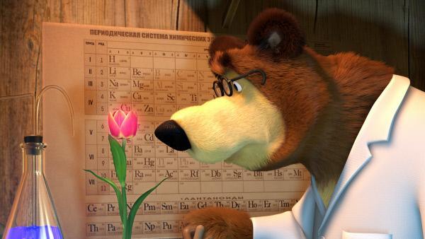 Bild 1 von 2: Der Bär hat eine Formel gefunden, verwelkte Blumen wieder zum Blühen zu bringen.