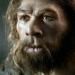 Der Neandertaler