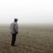 Bilder zur Sendung: SauAcker - Zwischen zwei Generationen auf einem schw�bischen Bauernhof