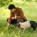 Der Schweinehirt