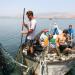 Bilder zur Sendung: So isst Israel