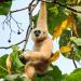 Wunderbares Thailand - Naturjuwel im Südosten Asiens