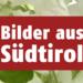 Bilder zur Sendung: Bilder aus Südtirol