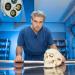 Dem Tod auf der Spur - Die F�lle des Prof. Tsokos