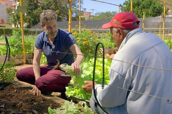 Bild 1 von 3: Philippe Simay (li.) mit Jorge Padron (re.) bei der Gemüseernte