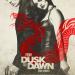 From Dusk Till Dawn - Die Serie
