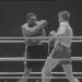 Ein Großkampftag - Beobachtungen bei einer Boxveranstaltung