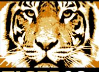 Elefant, Tiger & Co. Nonstop