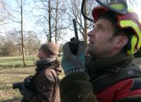 Wenn Bäume zur Gefahr werden