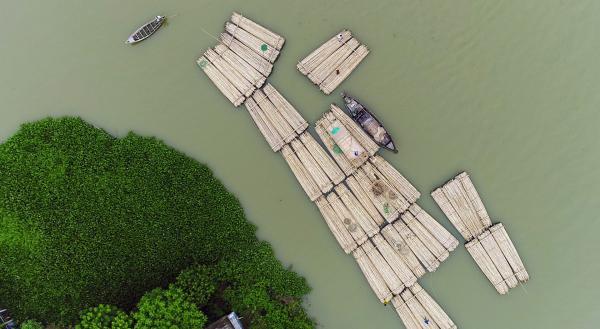 Bild 1 von 1: Bambusflößer unterwegs auf dem Kushiyara-Fluss.