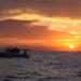 Bilder zur Sendung: Catching Hell - Die Speerfischer von Florida