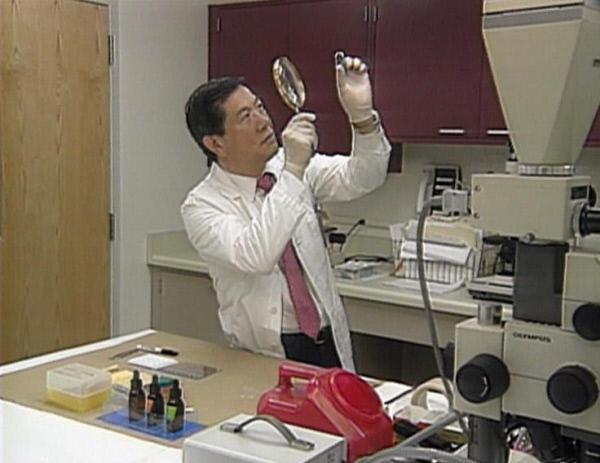 Bild 1 von 2: Mit detektivischer Genauigkeit untersucht der Pathologe Henry Lee die gefundene Haarsträhne.