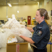 Border Patrol New Zealand - Einsatz an der Grenze