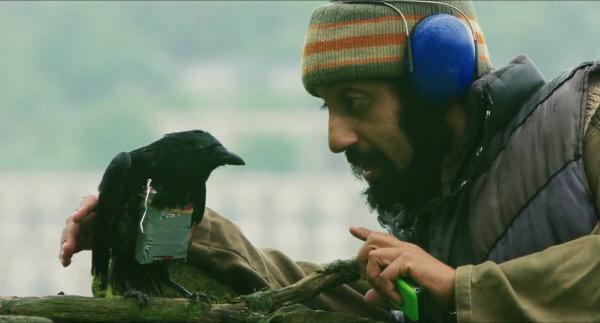 Bild 1 von 6: Faisal (Adeel Akthar) versucht im heimatlichen Sheffield, Krähen als Bombenträger abzurichten.