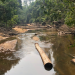 SOS Amazonas - Apokalypse im Regenwald
