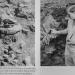 Blut und Boden. Nazi-Wissenschaft
