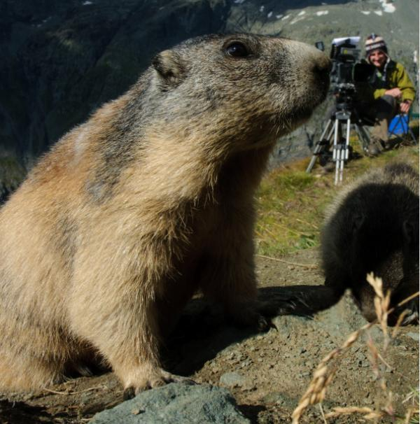 Bild 1 von 5: Der Tierfilmer Jan Haft und seine Mitstreiter lassen sich in dem Film \