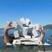 Von der Seebühne Bregenz: Carmen