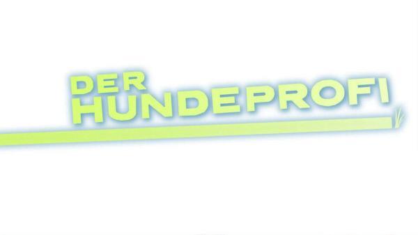 Bild 1 von 6: Der Hundeprofi - Logo