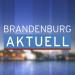 Bilder zur Sendung: Brandenburg aktuell
