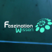 Faszination Wissen