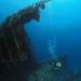 Bilder zur Sendung: Jacques Cousteau's Vermächtnis