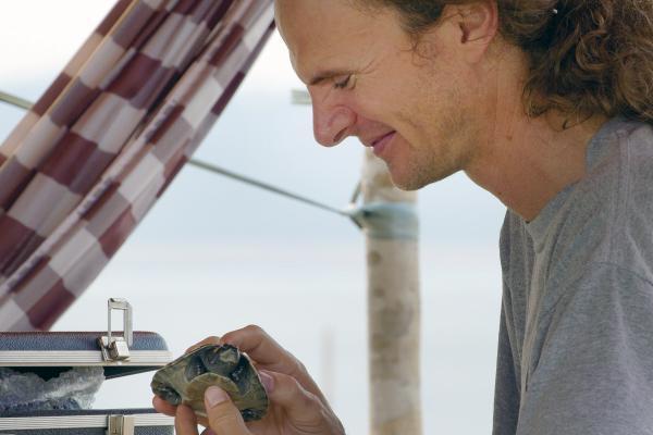 Bild 1 von 5: Peter Praschag untersucht und vermisst eine junge Arrau-Schildkröte.