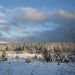 Winter in Ostpreußens Zauberwald