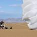 Bilder zur Sendung: DOKUPEDIA: Ausgesetzt in der Wildnis - In der Wüste Arizonas