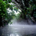 Mythos Kongo - Fluss der Extreme