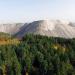 Entdeckungen in Hessens Wäldern