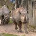 Der globale Zoo