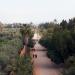 Magische Gärten - Marrakesch: Agdal