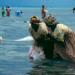Die Algenbäuerinnen von Sansibar