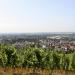 Bensheim und die hessische Toskana