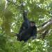 Bilder zur Sendung: Expedition Guyana