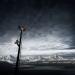 Power & Ice - Alaska unter Strom