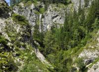 Eine Reise durch Niederösterreichs Naturparke - Von wilden Tieren, Mooren und Ruinen