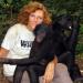Bilder zur Sendung: Die Mutter der Bonobos