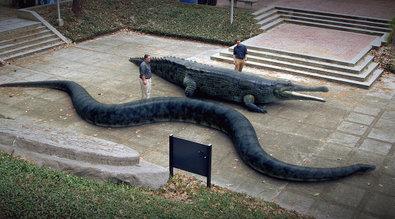 Mega Croc vs. Superschlange - Mega Crocs vs. Super Snake ...