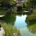Natur im Garten - Paradies vor der Haustür