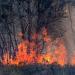 Klimawandel - Die Fakten mit Harald Lesch
