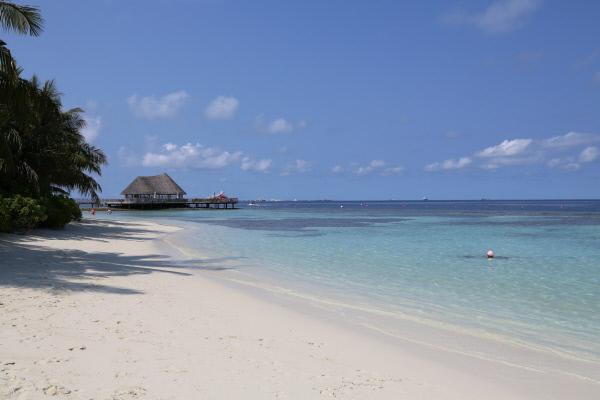 Bild 1 von 3: Insel Bandos auf den Malediven.