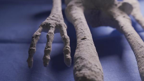 Bild 1 von 15: Statt Fingernägel haben die mumifizierten Wesen Klauen an Händen und Füßen.