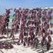 Bilder zur Sendung: Wilde Inseln